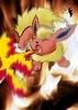 Nia Wolf: Flareon, used Fire Blast!