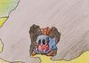 Articuno: Muréna  čeká  na svou  kořist ...