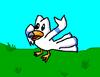 Rizarden: Wingull