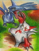Charizardman: Zangoose vs. Skarmory